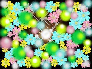 花とポンポン